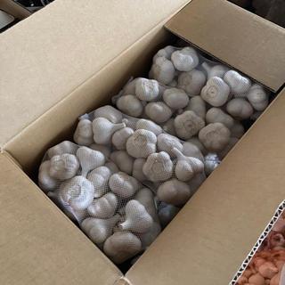 [お盆セール残り 4つ]青森県産乾燥ニンニク10kgA品サイズS(野菜)