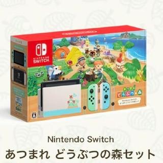 Nintendo Switch - Nintendo Switch 本体 あつまれどうぶつの森セット