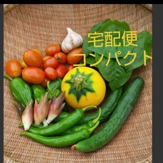 【宅配便コンパクト】お野菜セット