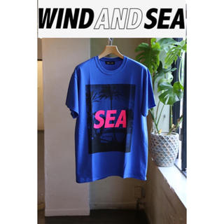 SEA - WIND AND SEA ウインダンシー T PALM TREE PHOTO