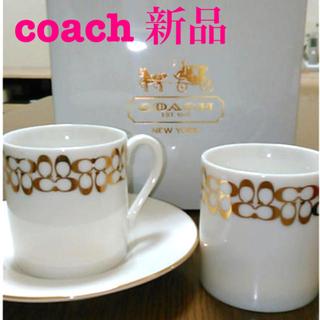 COACH - コーチ coach  カップセット【新品未使用】