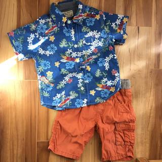 シップス(SHIPS)の90 〜100 セコーデ売り(Tシャツ/カットソー)