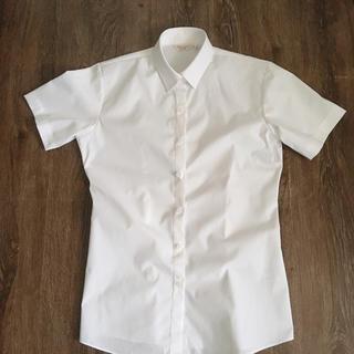 半袖Yシャツ 女性用S