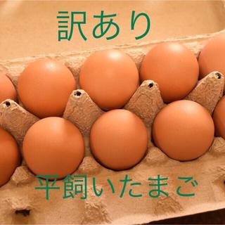 訳あり 平飼いたまご 10個入り5パック(野菜)