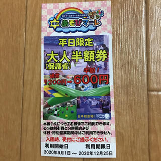 東京あそびマーレ 半額券(遊園地/テーマパーク)