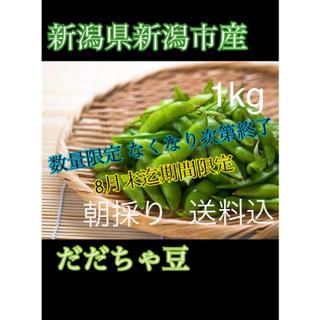 たぬきさんちの枝豆(新潟県産だだちゃ豆)1kg(野菜)