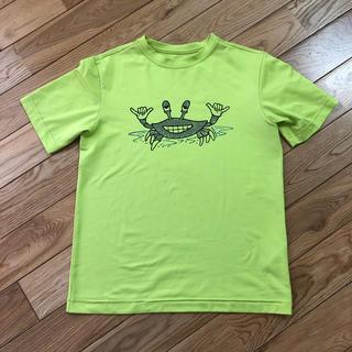 パタゴニア(patagonia)のパタゴニア  Tシャツ キッズ M(Tシャツ/カットソー)