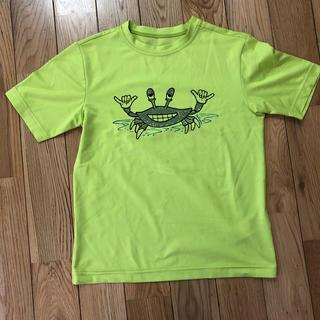 パタゴニア(patagonia)のパタゴニア  キッズ Tシャツ S(Tシャツ/カットソー)