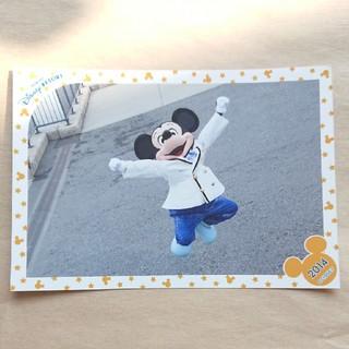 ディズニー(Disney)の2015 スペシャルフォト(キャラクターグッズ)