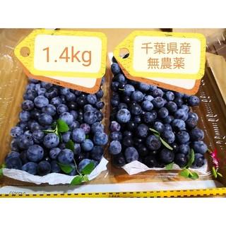 ブルーベリー 1.4kg 千葉県産 無農薬 完熟 ミント ミニ保冷剤入り(フルーツ)