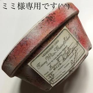 多肉植物リメイク缶鉢寄せ植えにどうぞ(^^)ミミ様専用です(^^)(その他)
