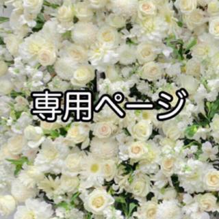 専用ページ(8/24)(その他)