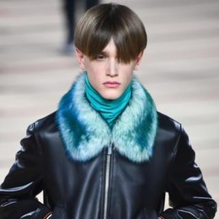 ディオールオム(DIOR HOMME)の求 Dior homme 17aw レザー ブルゾン ジャケット(ブルゾン)