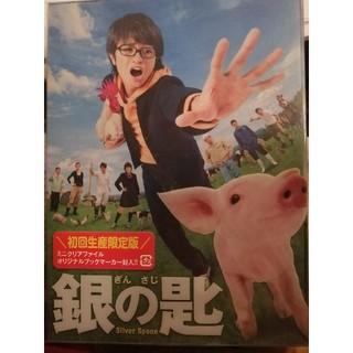 セクシー ゾーン(Sexy Zone)の中島健人 銀の匙 映画DVD 初回生産限定版(日本映画)