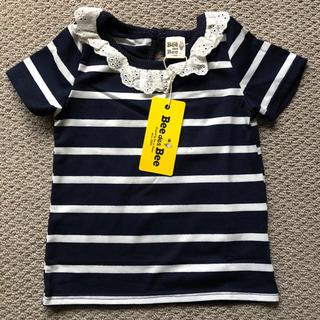 プティマイン(petit main)のレース襟 ボーダーカットソー(Tシャツ/カットソー)