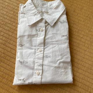 フェリシモ(FELISSIMO)の専用 フェリシモ  やっぱり猫が好きシャツ (シャツ/ブラウス(半袖/袖なし))
