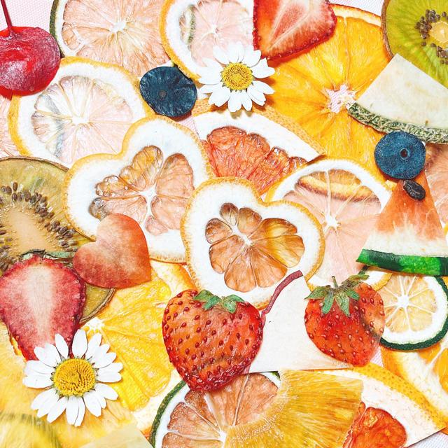 【訳あり】押しフルーツ シトラスミックス 40枚 ハンドメイドのフラワー/ガーデン(ドライフラワー)の商品写真
