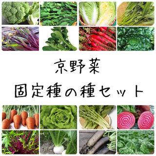 ★京野菜★固定種の種セット(野菜)
