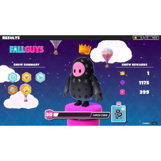 fallguys (家庭用ゲームソフト)