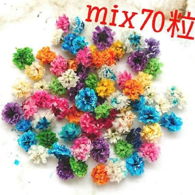 【無選別】かすみ草ドライフラワー70粒 ハンドメイドのフラワー/ガーデン(ドライフラワー)の商品写真