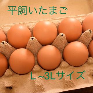 平飼いたまご  L ~3Lサイズ 10個入り3パック 国産もみじの卵 新鮮(野菜)