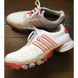 アディダス(adidas)のアディダス ゴルフシューズ レディース 24.0(その他)