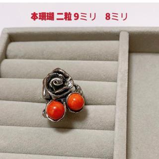 本珊瑚  二粒 稀少品 silver刻印あり 大粒(リング(指輪))