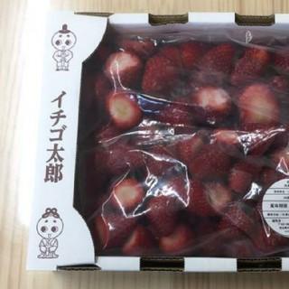まきこ様専用 古都華 冷凍イチゴ 2キロ(フルーツ)