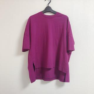 エンフォルド(ENFOLD)のenfold エンフォルド   カットソー パープル nagonstans (Tシャツ(半袖/袖なし))