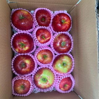 長野県産 シナノリップ早生りんご 標高800メートル栽培 約3キロ(フルーツ)