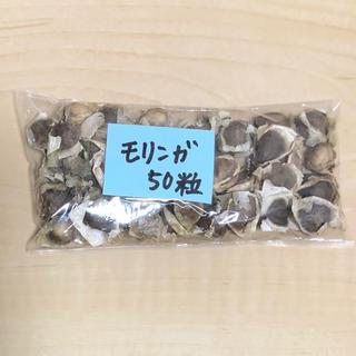 【スーパーフード種子 増量版】奇跡の木 モリンガの種約50粒 ハーブ 美容健康(野菜)