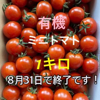有機ミニトマト1キロ(野菜)
