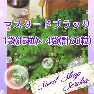 ㊸ マスタードブラック 家庭菜園 野菜 ハーブ 種 824(その他)