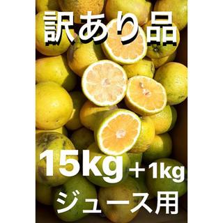 超超訳あり品 愛媛 宇和ゴールド15Kg+1kg   河内晩柑 ジュース用(フルーツ)