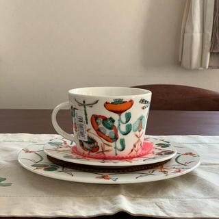 イッタラ(iittala)の《廃盤品》イッタラ コレント オレンジ カップ&ソーサー 22センチプレート (食器)