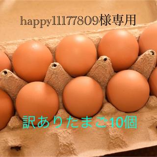 happy11177809様専用 訳ありたまご10個(野菜)