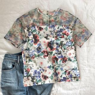 ルシェルブルー(LE CIEL BLEU)のLe ciel bleu シアー Tシャツ ブラウス 花柄 プリント(Tシャツ(半袖/袖なし))