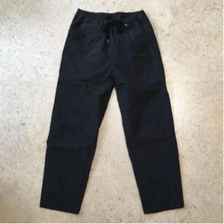 ワンエルディーケーセレクト(1LDK SELECT)の【TEATORA】Wallet Pants DT サイズ46(ワークパンツ/カーゴパンツ)