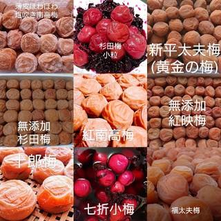 梅干し お好きな梅干し200g×2パック(漬物)
