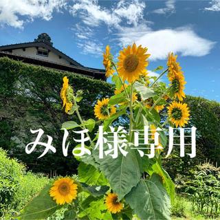 【みほ様オーダー】ドライフラワースワッグ①(ドライフラワー)
