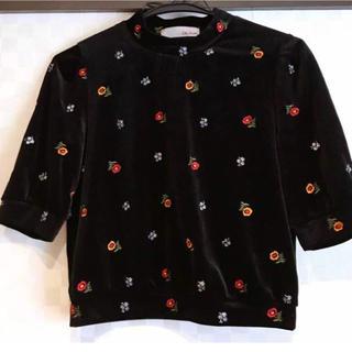 リリーブラウン(Lily Brown)のベロアトップス(Tシャツ(半袖/袖なし))