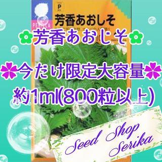 芳香あおしそ大容量1ml 家庭菜園 野菜 ハーブ 種 825(その他)