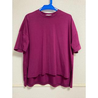 エンフォルド(ENFOLD)のenfold Tシャツ パープル(Tシャツ(半袖/袖なし))