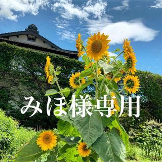 【みほ様オーダー】ドライフラワースワッグ②(ドライフラワー)