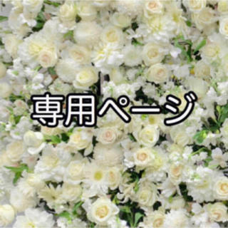専用ページ(9/1)(その他)