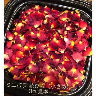 お得用!小さなミニ薔薇の花びら3g(小さめ)ドライフラワー★花弁ミニローズ★花材(ドライフラワー)
