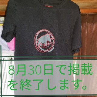 マムート(Mammut)の【MAMMUT】ロゴTシャツ(Tシャツ/カットソー(半袖/袖なし))