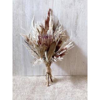 売り切れました✩autumn protea swag 約45センチ(ドライフラワー)