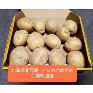 北海道 北見産 じゃがいも インカのめざめ 2kg ◎農家直送(野菜)