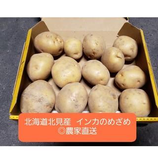 北海道 北見産 じゃがいも インカのめざめ ◎農家直送(野菜)